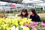 <기획>꽃과 나무가 숨 쉬는 녹색 도시 구현