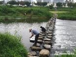 경기도 하천 73 '1~2등급'. 2012년 대비 13p 이상 향상